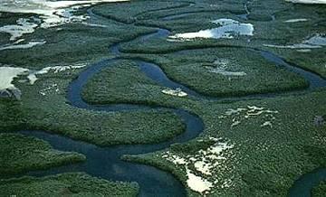 fleuve-casamance